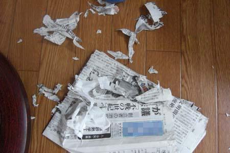 新聞ビリビリ