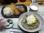 納豆オクラ蕎麦