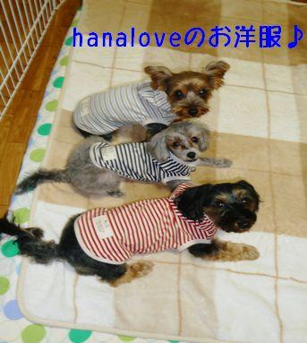 hanaloveのお洋服♪