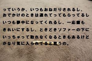 ぼっきれ(小)