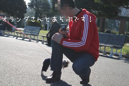 IMG_9207 横12
