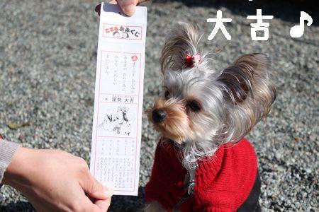 IMG_1449 神社1