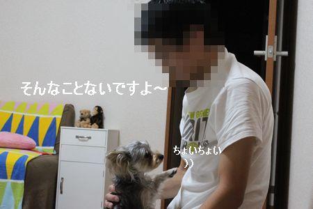 IMG_8042 そうじ3