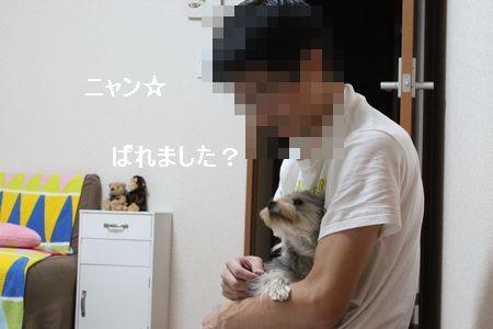 IMG_8044 そうじ4