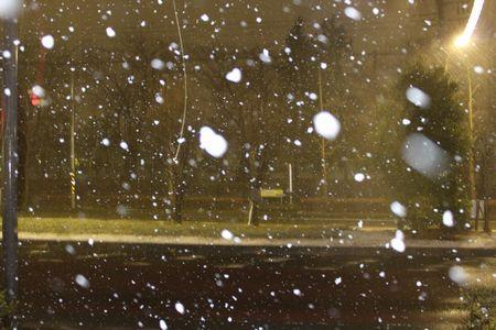 IMG_9344 雪