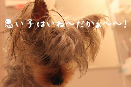 IMG_9528 ふろ