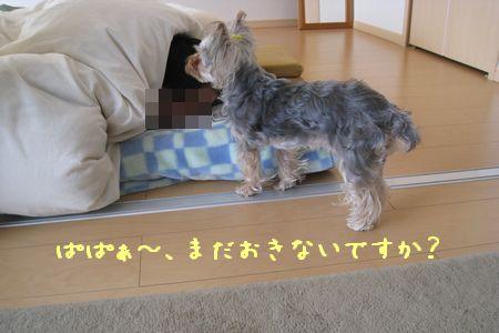 IMG_0527 ねおき8