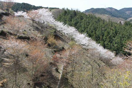 IMG_0404 鎌北湖