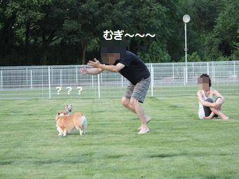 IMG_2718むぎ14