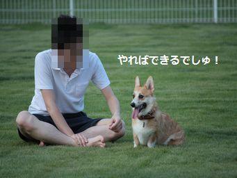 IMG_2704むぎ13