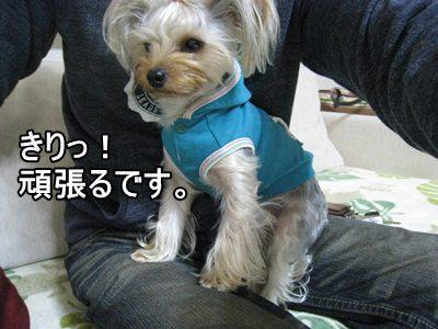001みやざき