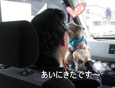 008みやざき