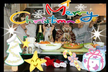 IMG_4314クリスマス2010
