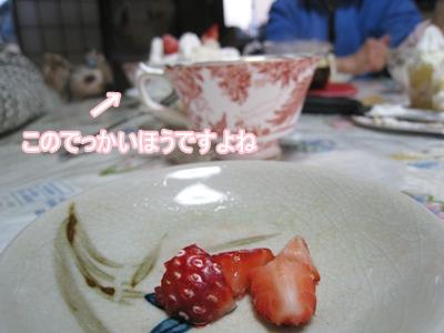 019実家3