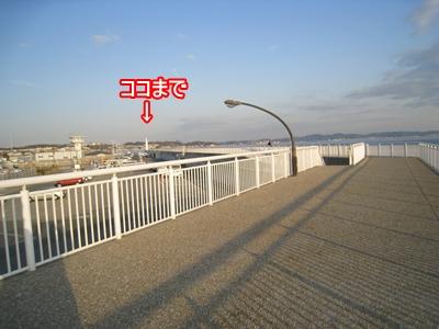 103江ノ島2