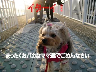 124江ノ島7