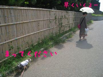 mini_IMG_2742.jpg