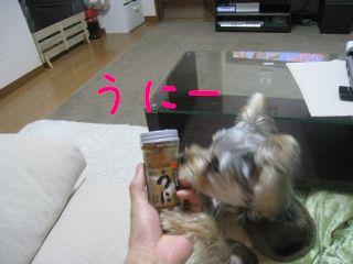 mini_IMG_3279.jpg
