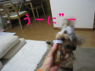 mini_IMG_3284.jpg