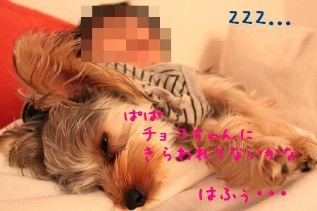 mini_IMG_6745.jpg