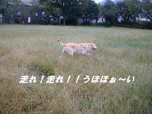 10.12.jpg