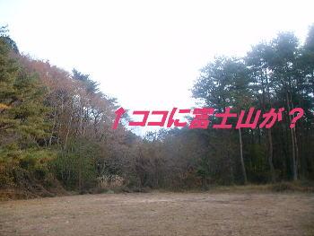 20051124134649.jpg