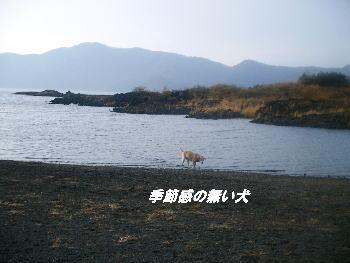 20051124135121.jpg