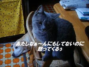 20051201111028.jpg