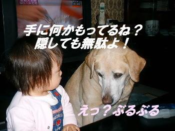 20051201113103.jpg