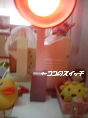 20060920113345.jpg