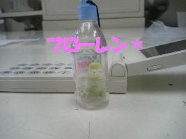 20070525120211.jpg