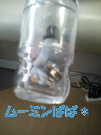 20070525120405.jpg