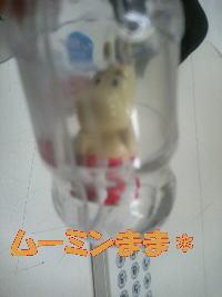20070525120447.jpg