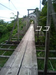 20070619123124.jpg