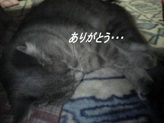 20071114142033.jpg