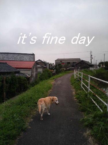 お散歩です7