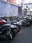 並ぶバイク~。