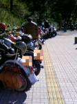 バイクいっぱい。