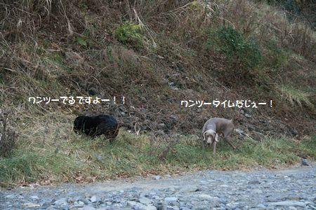 002_20110126011947.jpg