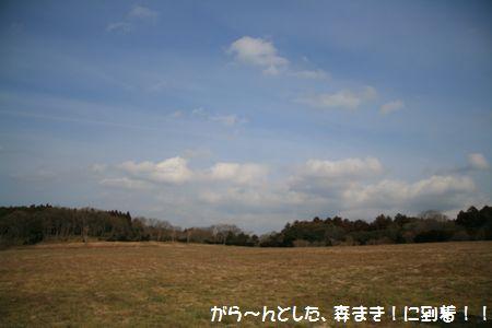 002_20110130220909.jpg
