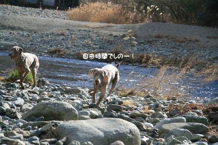 006_20110126011947.jpg