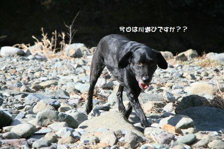 008_20110126011947.jpg