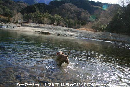 010_20110126012933.jpg