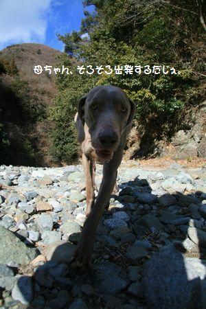 015_20110126012932.jpg