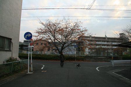 051kai.jpg
