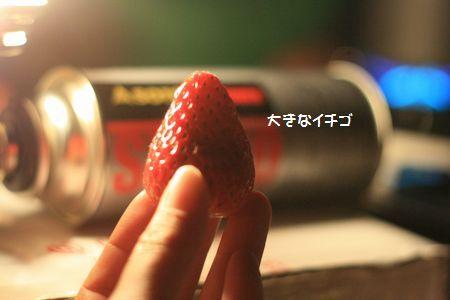 257_20110105013202.jpg