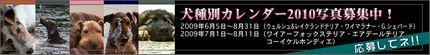 banner_calendar.jpg