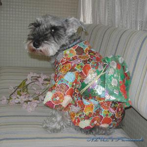 Lilyの着物♪