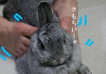 20080915_2.jpg
