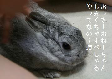 20080915_3.jpg